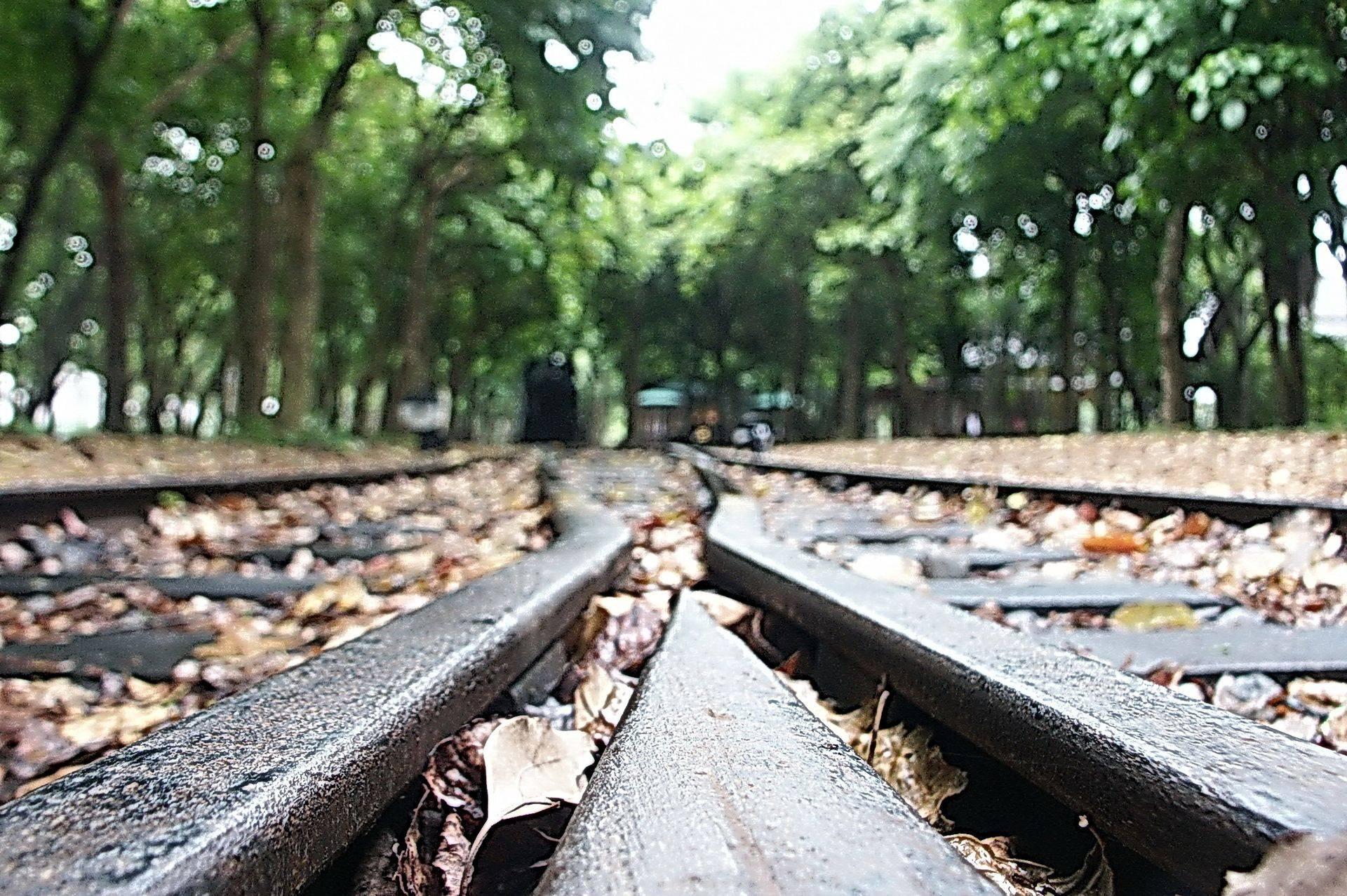 宜蘭景點-羅東林業文化園區