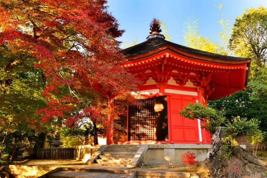北海道景點_北海道神宮